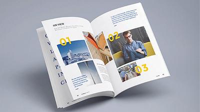 Revista me lidhje me ngjitës